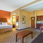 Holiday Inn Express Hotel & Suites Huntersville-Birkdale Foto
