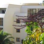 Foto de Pestana Palms Ocean Aparthotel