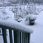 Snowy gardens at Deer Island Manor 2017