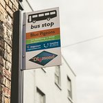 Our Very Own Bus Stop - running hourly buses to both Sandwich & Deal