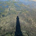 l'ombre du phare sur le recif depuis le sommet