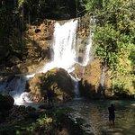 YS Falls Foto