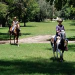 cantering in the park