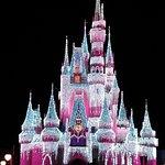 Walt Disney World Foto