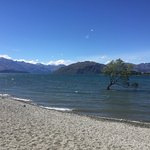 Foto de Wanaka Kiwi Holiday Park & Motels
