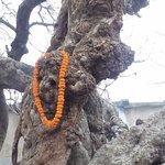 Chand Kazi Samadhi - 3
