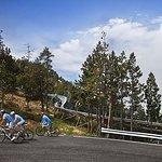 Ruta cicloturistica 15: La Rabassa