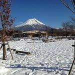 富士山見れました