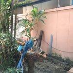 Photo of Baan Kasirin Resort