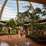 Foto de The Mirage Hotel & Casino