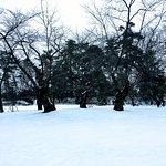 Hirosaki Park in Winter