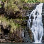 The guide taught me how to getthis long-exposure shot of Waimei Falls