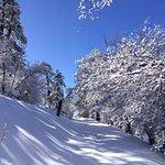 Rim Nordic Cross Country Ski Center