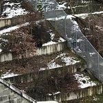 Photo of Barenpark