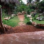 Bilde fra Kudehya Guesthouse