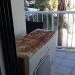 Catalina Resort Photo