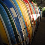 Rentable boards
