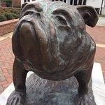 Mississippi State University Foto