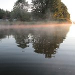 Mist on the water on our morning kayak trip