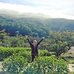 Photo de Rainbow Valley Lodge