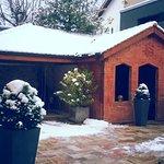 Doux réveil sous la neige - Janvier 2017