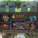 Photo of Marineland Crocodile Park