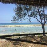 Photo of Dive Point Zanzibar
