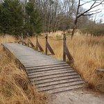 Photo of Landal Rabbit Hill
