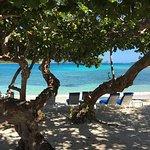Foto van Coconut Cove Beach Bar and Grill