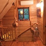 La montée d'escalier et sa rampe très particulière (bizarrerie de la nature)