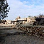 Foto de Passeig Arqueològic