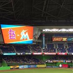 Cardinals vs Marlins game - 7/29/16