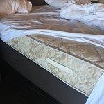 Paradise Point Resort & Spa Foto