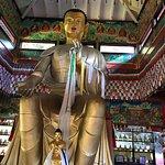 Land of Medicine Buddha Foto