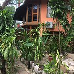 Tico Adventure Lodge Photo