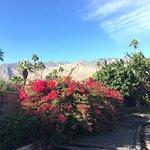 Foto di Quality Inn Palm Springs