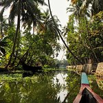 Photo of Alleppey Backwaters Backwater Village Tour