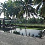 U Inchantree Kanchanaburi Foto