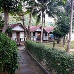 View of the staff bungalows from the Garden View Bungalow