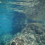 Photo de Isola Bella