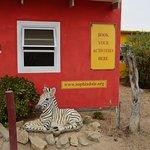 Photo of Sophia Dale Base Camp