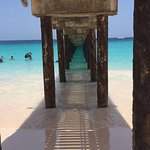 View from under the pier.
