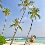 Фотография Velaa Private Island