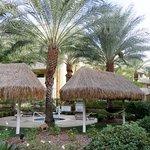 Cancun Resort Foto