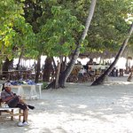 Cayo Levantado (Bacardi Island) Foto