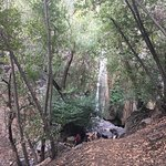 Rose Valley Falls Trail