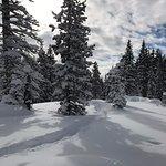 Wanderlust Tours Bend Snowshoe