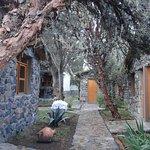 Photo of Casa Andina Classic Colca