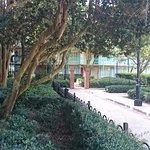 Disney's Port Orleans Resort - French Quarter Foto