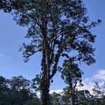 Photo de Hacienda Pozo Azul